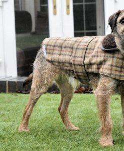 Balmoral tweed dog coat