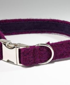 Burberry Harris tweed designer dog collar