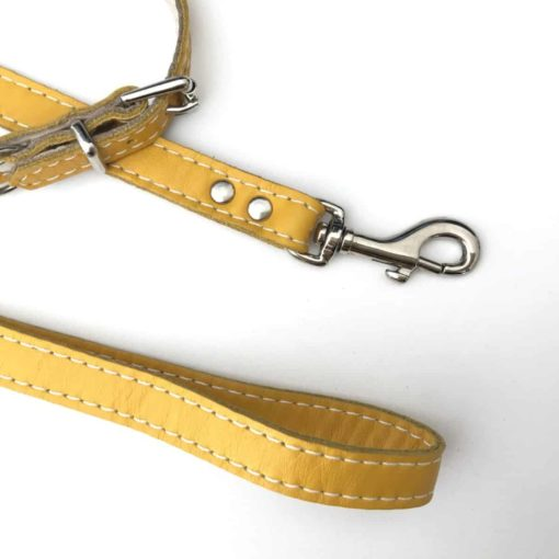 Yellow and Cream soft leather puppy collar and lead set