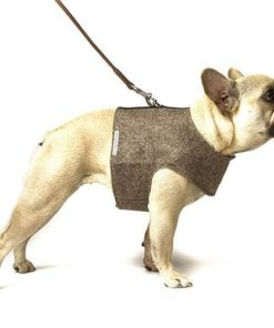 Mutts and Hounds Brown herringbone k Tweed Soft Harness