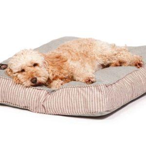 Brown stripe and green denim look box cushion dog bed