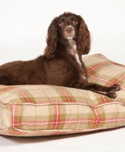 Newton box cushion dog bed