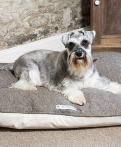 Herringbone brown tweed dog pillow bed