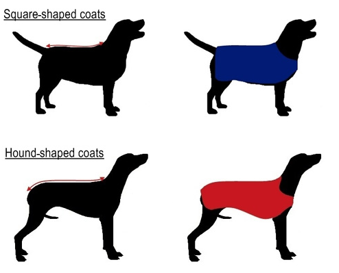 Sizing for quilted dog coats