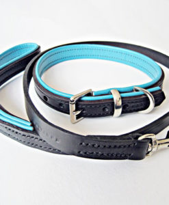 Black and jade padded collar and lead