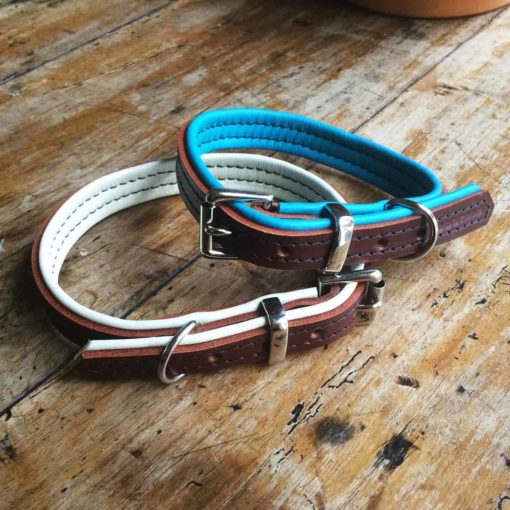 Brown and cream and teal padded leather dog collar