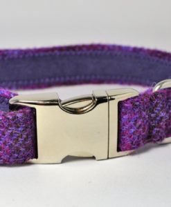 Purple tweed designer dog collar