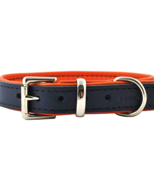 Navy blue and orange padded leather dog collar