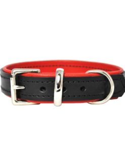 Luxury leather puppy collar