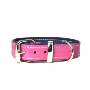 Designer padded leather rose pink and navy blue padded dog collar with matching lead