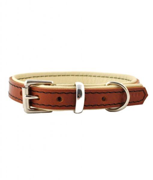 Padded Leather Dog Collar