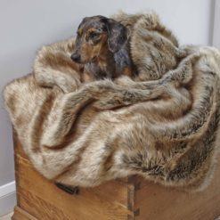 Golden Husky Faux Fur Dog Blanket. Luxury faux fur throws.