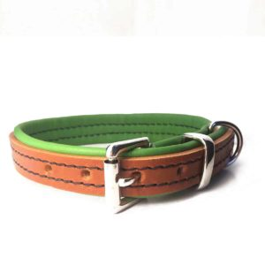 Tan and lime green padded leather dog collar