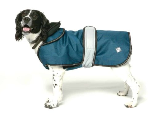 Blue 2 in 1 coat: Stylish rain coat with removable fleece liner