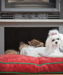 Ruby red corduroy boxed dog cushion