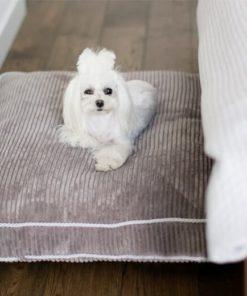 Grey boxed dog cushion