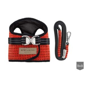 Red soho dog harness with matching lead