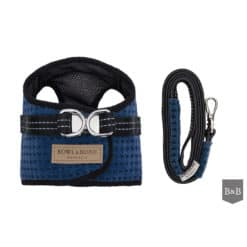 Blue soho dog harness with matching lead