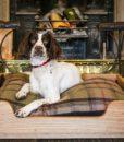 Solid Oak Luxury Floor Dog Bed hand carved