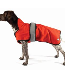 Orange all season dog coat