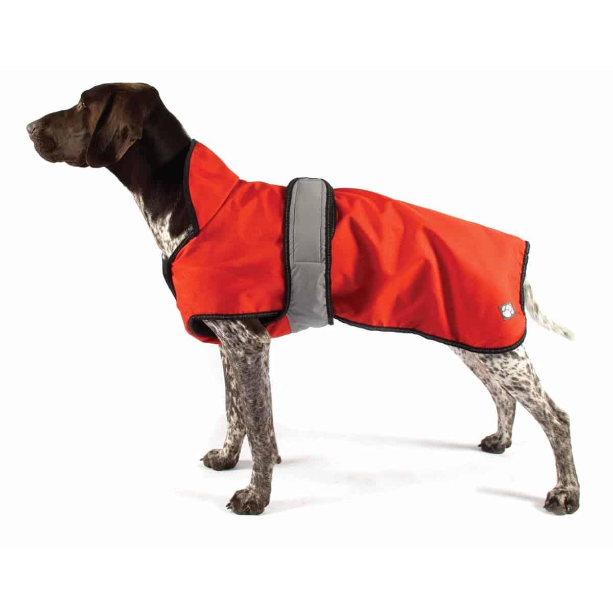 Orange all season dog coat
