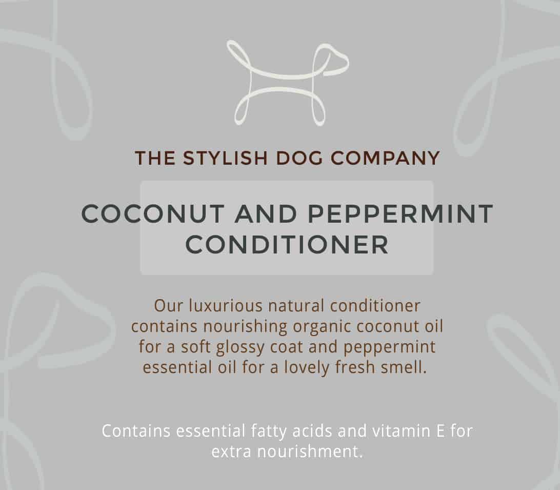 Coconut and peppermint natural dog shampoo from The Stylish Dog Company