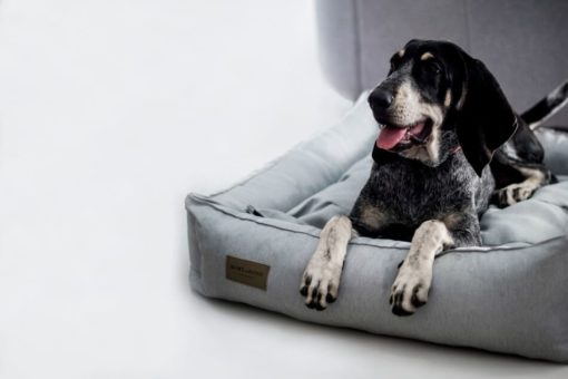 Grey Urban Dog Bed Bowl and Bone