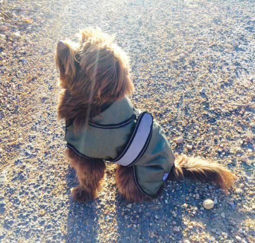 Khaki all season dog coat 1 LR Dog Coat Khaki_preview