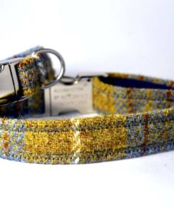 Mustard and blue harris tweed dog collar