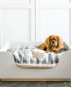 Painted hand made luxury wooden dog bed