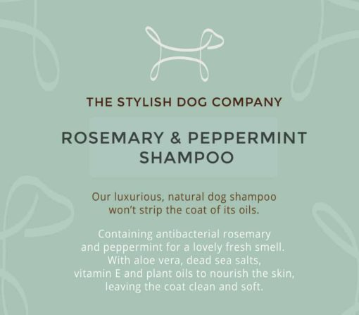 Peppermint and rosemary natural dog shampoo from The Stylish Dog Company