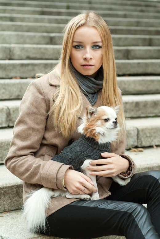 BROWN WOOL DOG JUMPER