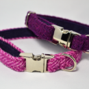 Tweed puppy collars
