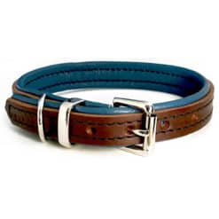 Brown and denim blue leather dog collar