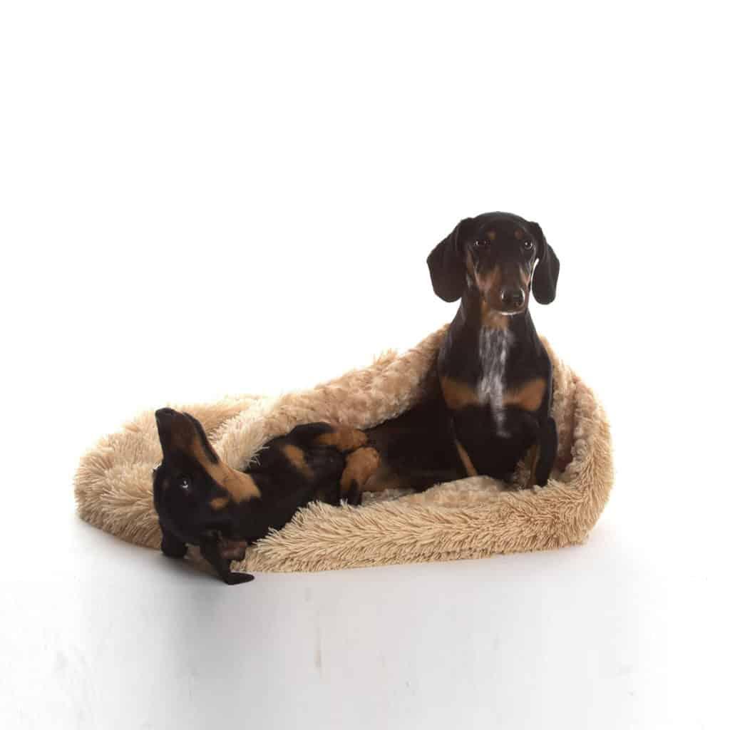 Camel beige 3 in 1 shaggy nest dog blanket