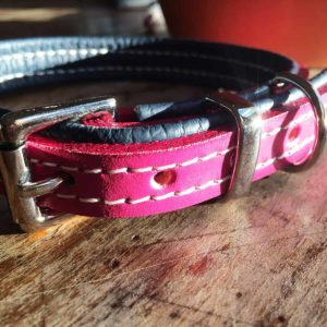 Rose pink and navy blue padded dog collar