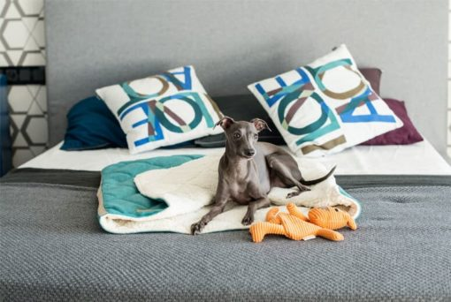 Bowl and Bone Luxury Grey Dog Sleeping Bag