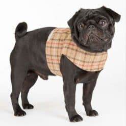 Mutts and Hounds Balmoral Tweed Soft Harness
