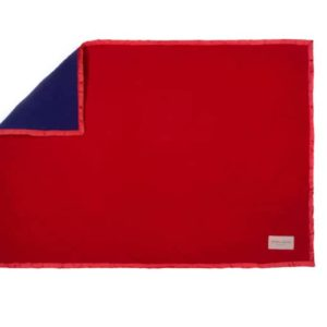 Red and blue everyday dog blanket