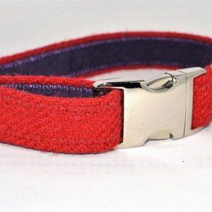 Red Harris Tweed Dog Collar