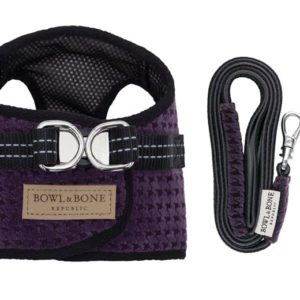 Purple dog harness and lead Bowl and Bone