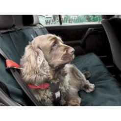 Car seat protective cover