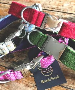 Harris tweed dog collars