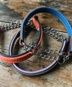 Padded leather half check leather dog collar