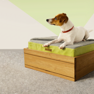 Apple and graphite oak wooden dog bed with storage
