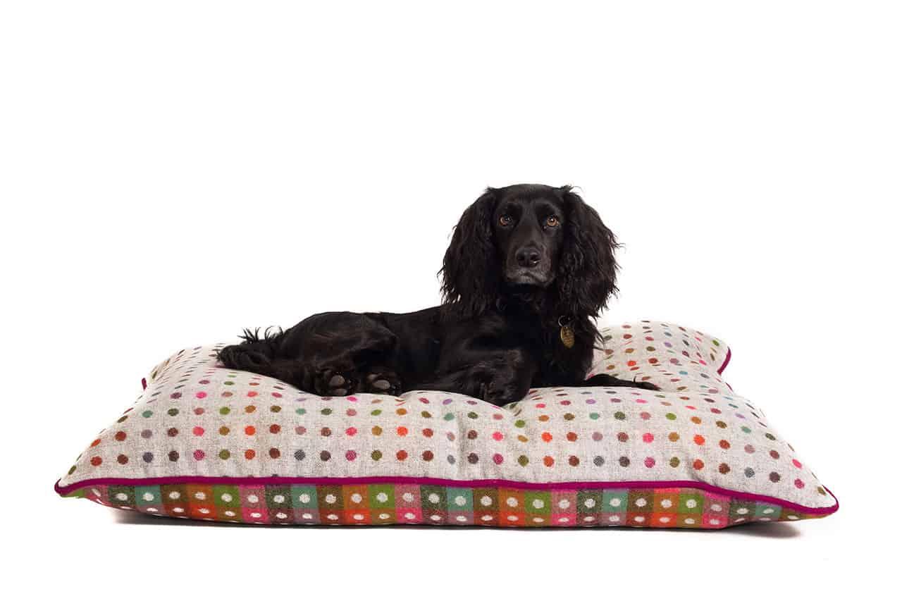 Luxury Grey Multispot Pure New Wool Dog Bed The Stylish