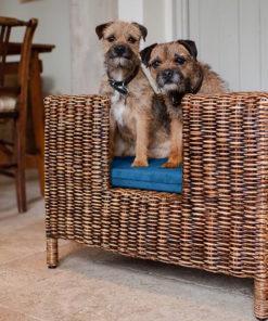 rattan dog bed