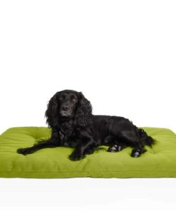 Dog travel bed roll, olive, organic