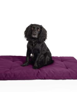 Dog travel bed roll, PURPLE, organic
