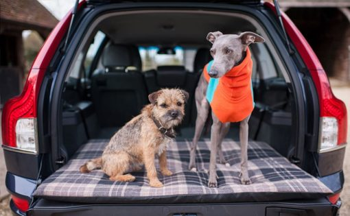 Car boot topper protection for dogs